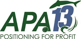 APA13-logo