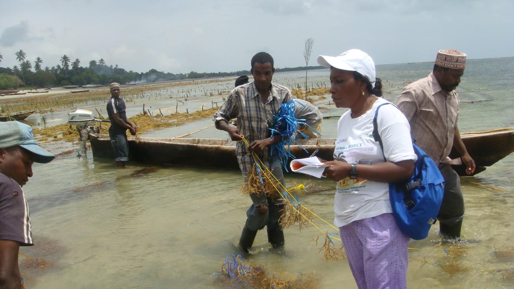 Aquaculture Capability & Capacity