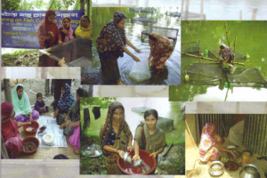 PROJECT FOR RURAL WOMEN IN BANGLADESH